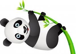 google panda 20 update solutions