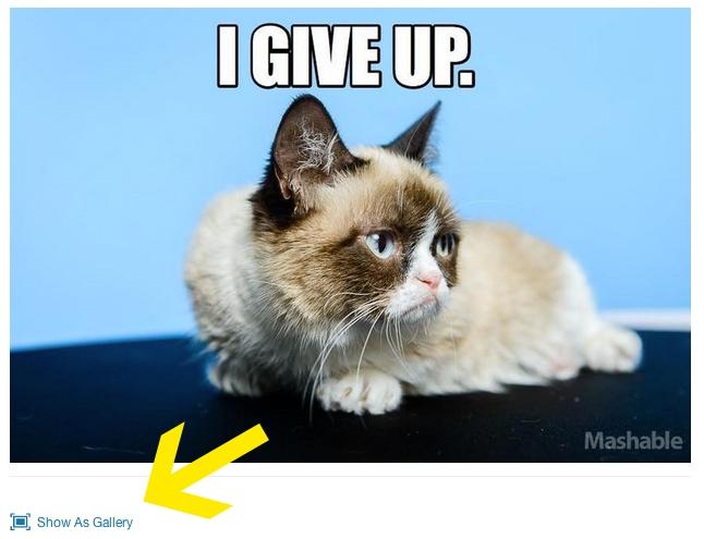 grumpy-cat2