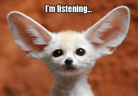 feedback-im-listening