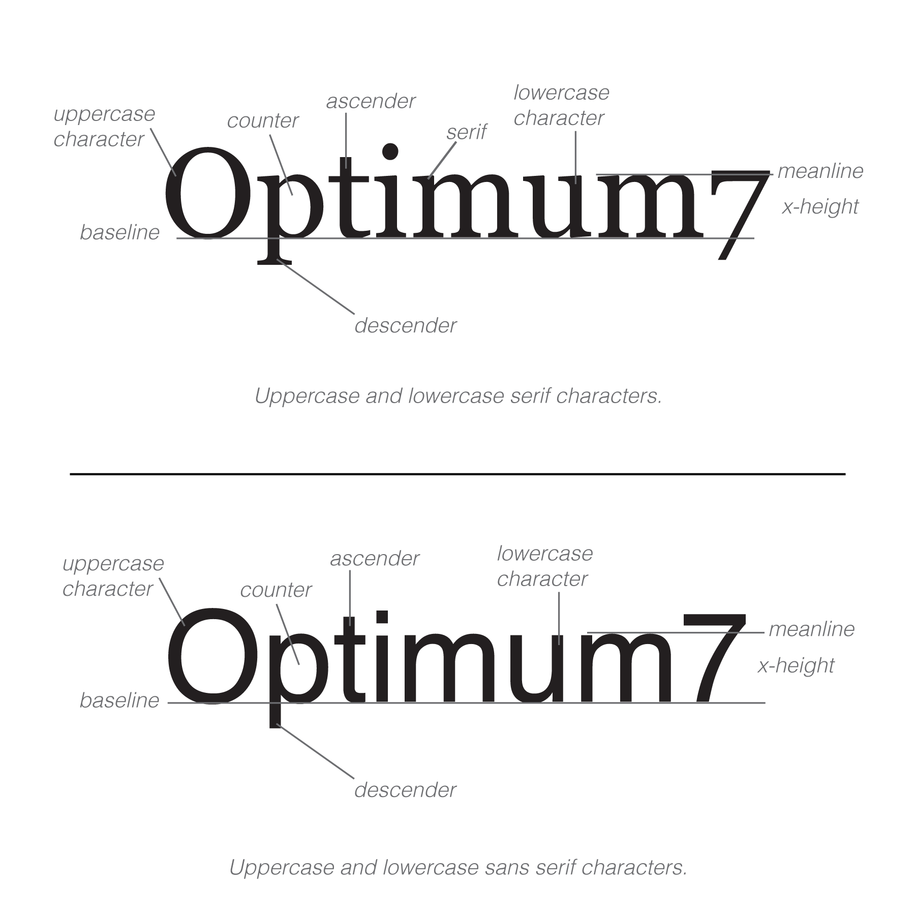 typography-parts-optimum7