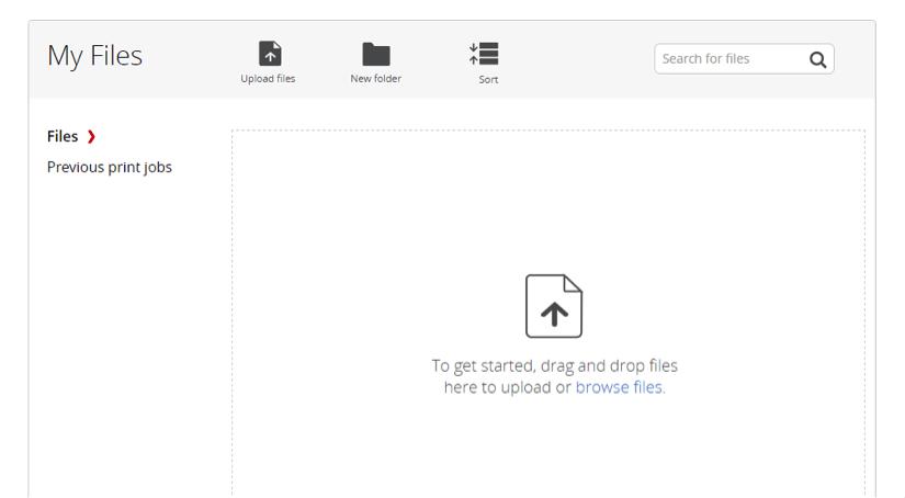 Permanent-on-stie-file-storage