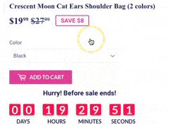 Countdown Sale Functionality