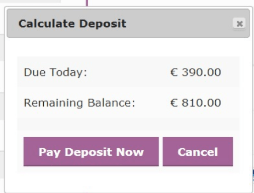Partial Payment Functionality