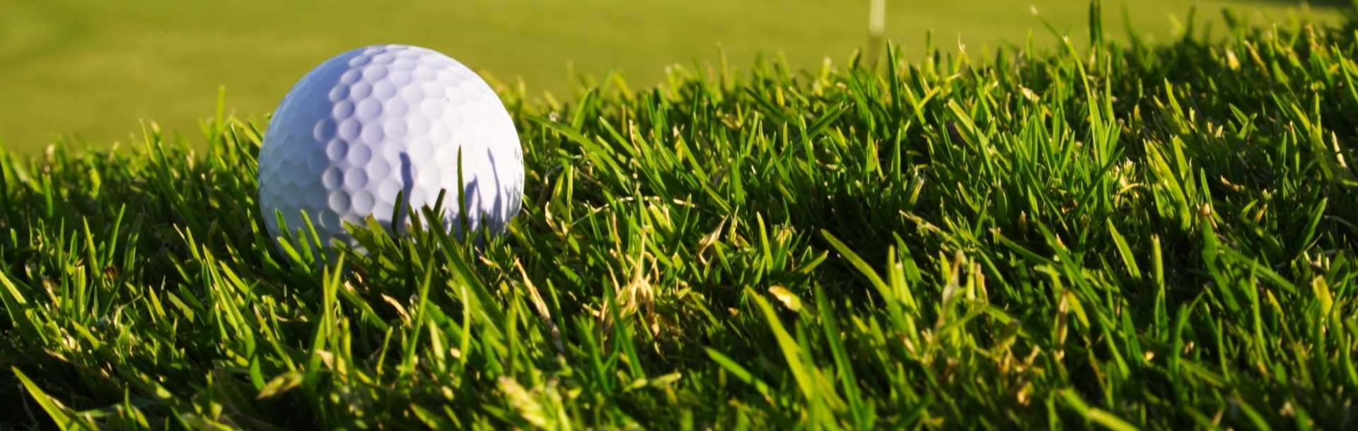 Golf-Ball-On-Grass-Macro-Wallpaper-HD