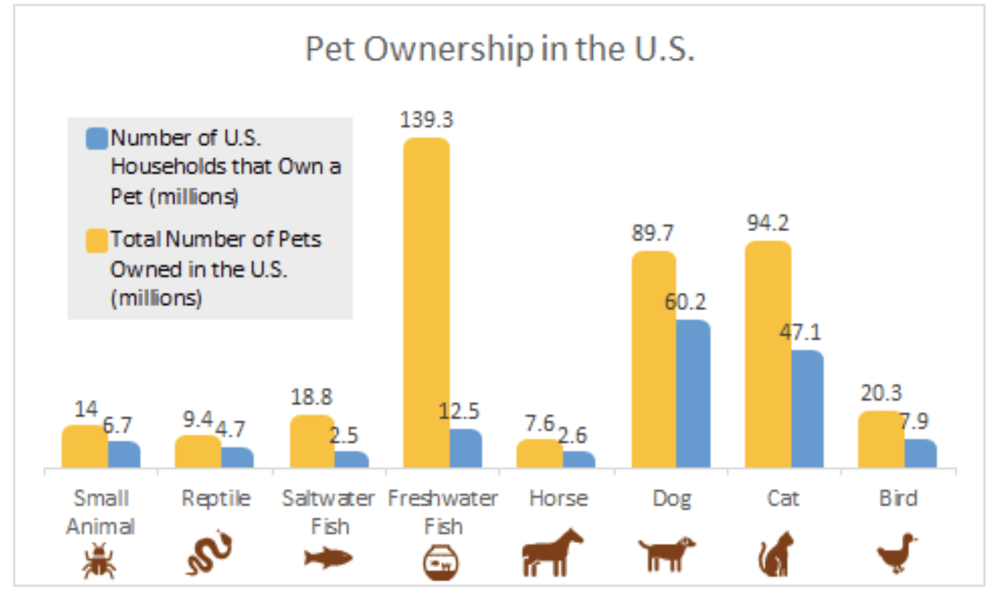 How to Market and Introduce Pet Products