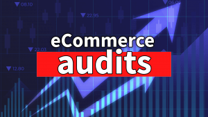 E-Commerce Audits and Custom Development for Publicly Traded Companies